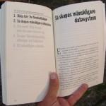 """Så skapas mänskligare datasystem - ett kapitel i boken """"Jävla skitsystem!"""""""
