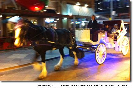 Hästdroska i Denver